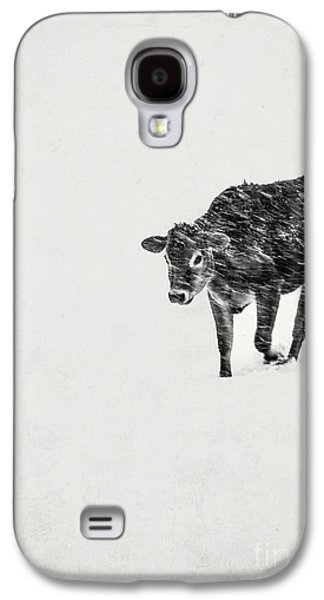 Winter Storm Photographs Galaxy S4 Cases - Lost calf struggling in a snow storm Galaxy S4 Case by Edward Fielding