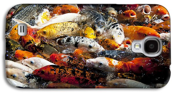 Butterfly Koi Galaxy S4 Cases - Lots of Hungry Koi  Galaxy S4 Case by Wilma  Birdwell