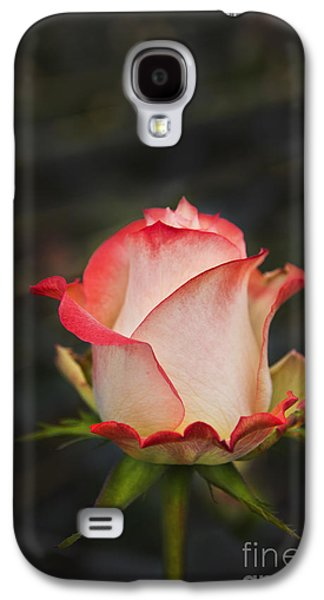 Neil Young Galaxy S4 Cases - Love Is A Rose II Galaxy S4 Case by Al Bourassa