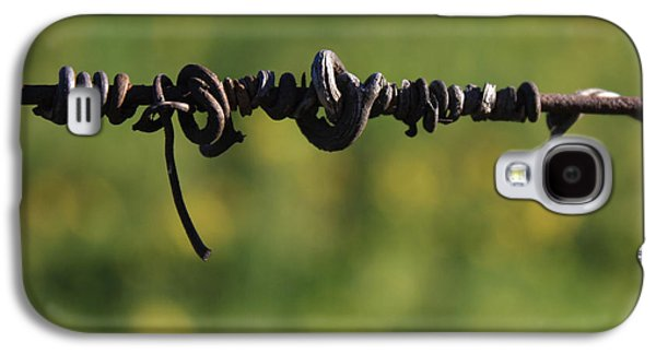 Vineyard In Napa Galaxy S4 Cases - Love Lines 4 Galaxy S4 Case by Penelope Moore