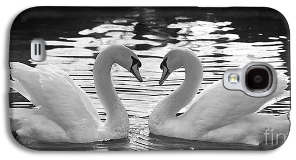 Swan Pair Galaxy S4 Cases - Love Swans Galaxy S4 Case by Brandon Alms