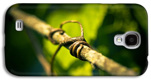 Vines Galaxy S4 Cases - Love Takes Hold Galaxy S4 Case by Shane Holsclaw