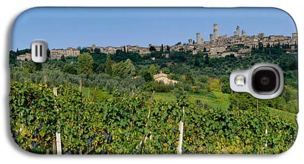 Winery Photography Galaxy S4 Cases - Low Angle View Of A Vineyard, San Galaxy S4 Case by Panoramic Images