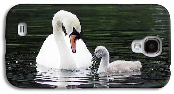 Beautiful Galaxy S4 Cases - Lunchtime for Swan and Cygnet Galaxy S4 Case by Rona Black