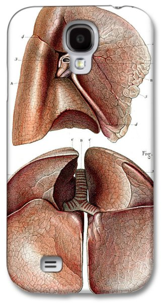 Lung Anatomy Galaxy S4 Case by Collection Abecasis