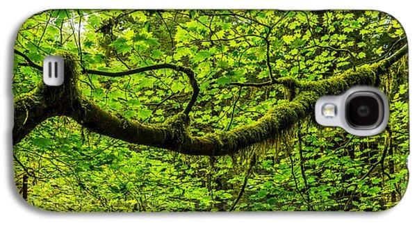 Coast Landscape Galaxy S4 Cases - Lush Galaxy S4 Case by Chad Dutson
