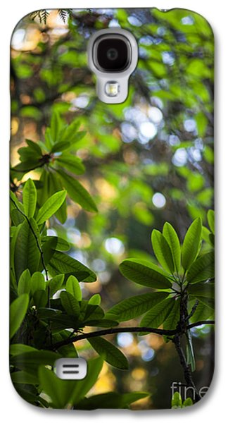 Rhododendron Galaxy S4 Cases - Lush Rhododendron Forest Galaxy S4 Case by Mike Reid
