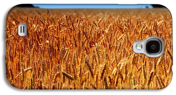 Grocery Store Galaxy S4 Cases - LYING in the RYE Galaxy S4 Case by Karen Wiles