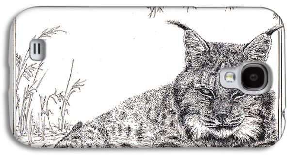 Bobcats Drawings Galaxy S4 Cases - Lynx Galaxy S4 Case by Rita Polizzi