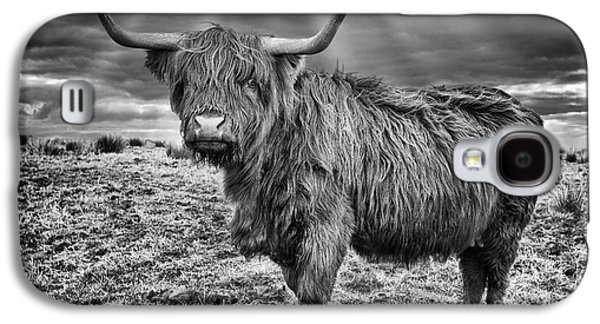 Steer Galaxy S4 Cases - Magestic Highland Cow Galaxy S4 Case by John Farnan