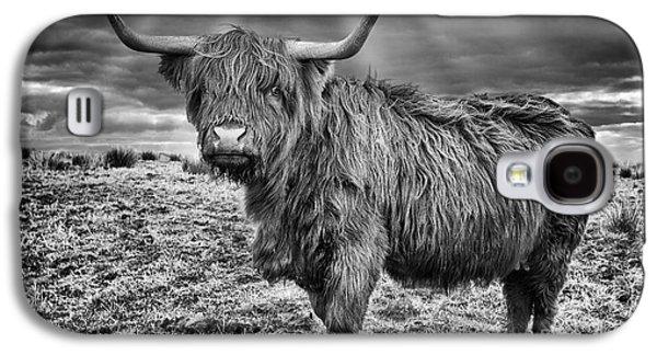 Snowy Day Galaxy S4 Cases - Magestic Highland Cow Galaxy S4 Case by John Farnan