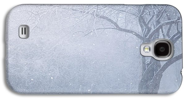 Winter Landscapes Galaxy S4 Cases - Magic Of The Season Galaxy S4 Case by Carrie Ann Grippo-Pike