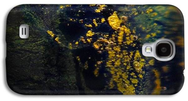 Fantasy Glass Galaxy S4 Cases - Magical Dust Galaxy S4 Case by Gaby Tench