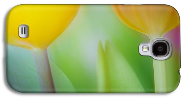 Recently Sold -  - Nature Abstracts Galaxy S4 Cases - Magical Tulips Galaxy S4 Case by Silke Magino
