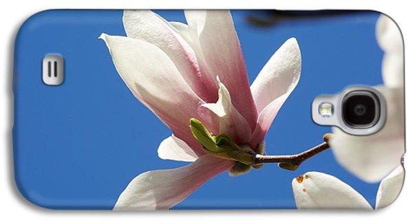 Magnolia Flower Galaxy S4 Case by Allan Morrison
