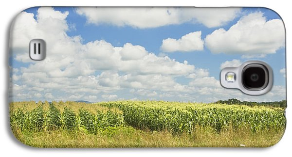Maine Farms Galaxy S4 Cases - Maine Corn Field In Summer Photo Print Galaxy S4 Case by Keith Webber Jr