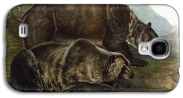 Male Drawings Galaxy S4 Cases - Male Grizzly Bear Galaxy S4 Case by Audubon