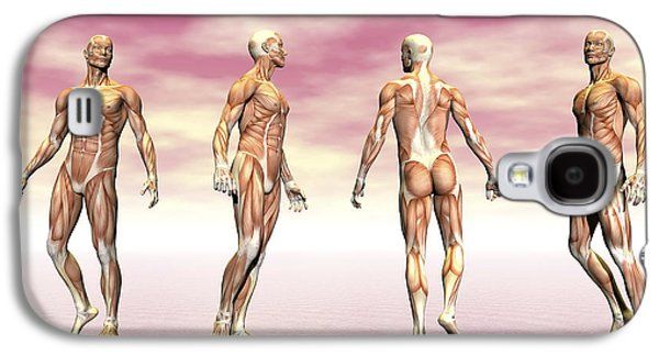 Male Muscular System From Four Points Galaxy S4 Case by Elena Duvernay