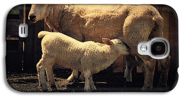 Mama Sheep And Baby Lamb Galaxy S4 Case by Maria Angelica Maira