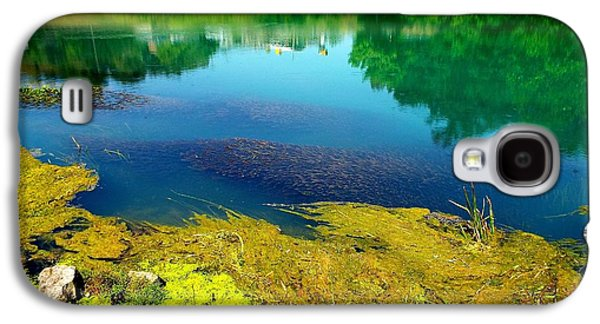 Will Power Photographs Galaxy S4 Cases - Mammoth Springs Water Vegetation Galaxy S4 Case by Cindy Croal