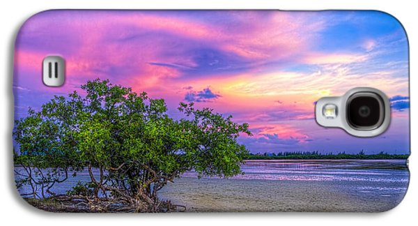 Rain Storm Galaxy S4 Cases - Mangrove by the Bay Galaxy S4 Case by Marvin Spates