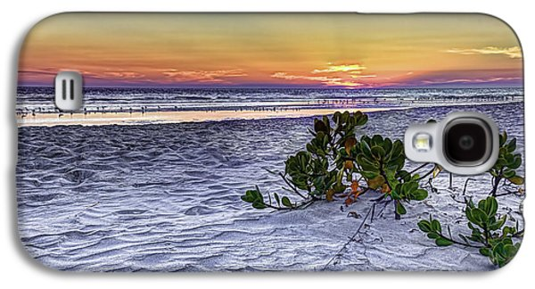 California Beach Galaxy S4 Cases - Mangrove On The Beach Galaxy S4 Case by Marvin Spates