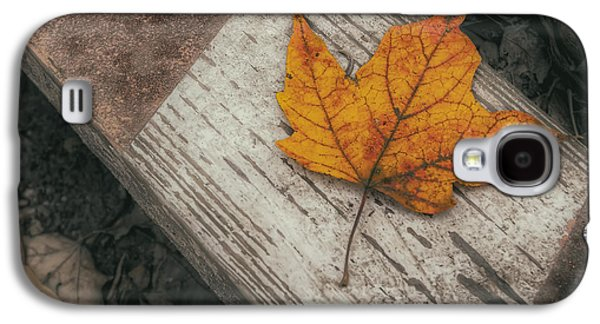 Maple Season Galaxy S4 Cases - Maple Leaf 2 Galaxy S4 Case by Scott Norris