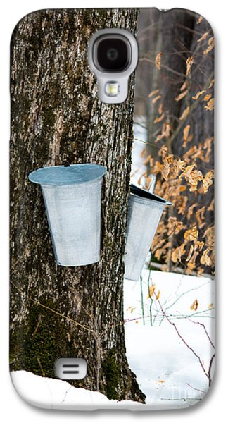 Sugaring Season Galaxy S4 Cases - Maple Sap Collection Galaxy S4 Case by Cheryl Baxter