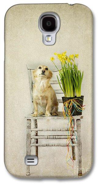 Puppies Galaxy S4 Cases - March Galaxy S4 Case by Elena Nosyreva