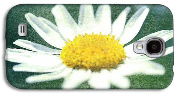 Bloosom Galaxy S4 Cases - Marguerite Blossom Galaxy S4 Case by Freefree Art
