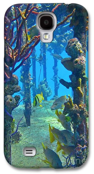 Water Grouper Print Galaxy S4 Cases - Marine Life on a Wreak Galaxy S4 Case by John Malone