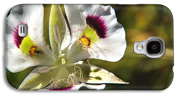 Haybale Galaxy S4 Cases - Mariposa Lily Galaxy S4 Case by Robert Bales