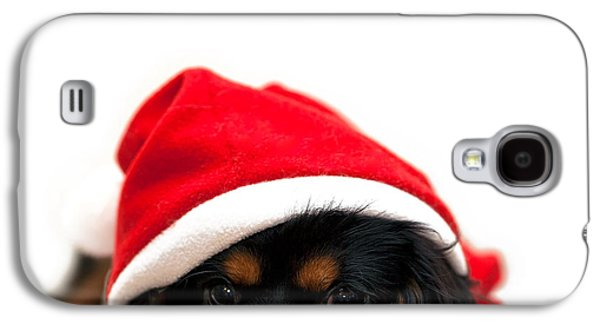 Christmas Cards - Galaxy S4 Cases - Marmaduke isolated Galaxy S4 Case by Jane Rix