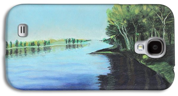 Waterscape Pastels Galaxy S4 Cases - Marshland 2 Galaxy S4 Case by Jeanne Fischer