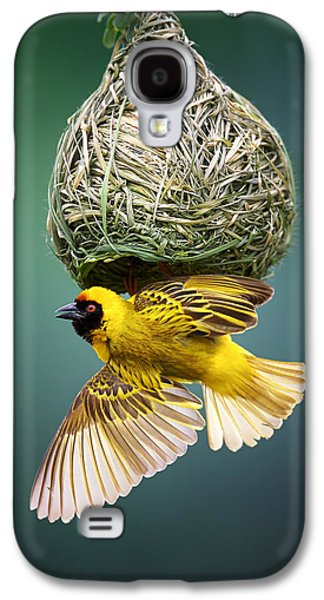 Fauna Photographs Galaxy S4 Cases - Masked weaver at nest Galaxy S4 Case by Johan Swanepoel