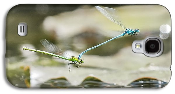 Demoiselles Galaxy S4 Cases - Mating Damselflies On The Wing Galaxy S4 Case by Steven Poulton