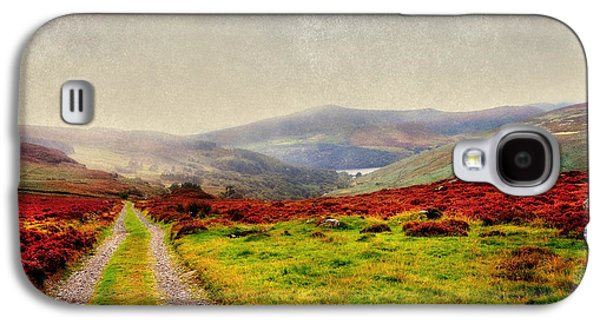Grass Galaxy S4 Cases - May it Be Your Journey On. Wicklow Mountains. Ireland Galaxy S4 Case by Jenny Rainbow