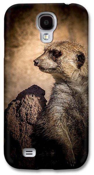 Meerkat 12 Galaxy S4 Case by Ernie Echols