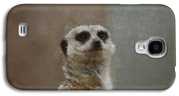 Meerkat 5 Galaxy S4 Case by Ernie Echols