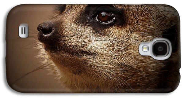 Meerkat 6 Galaxy S4 Case by Ernie Echols