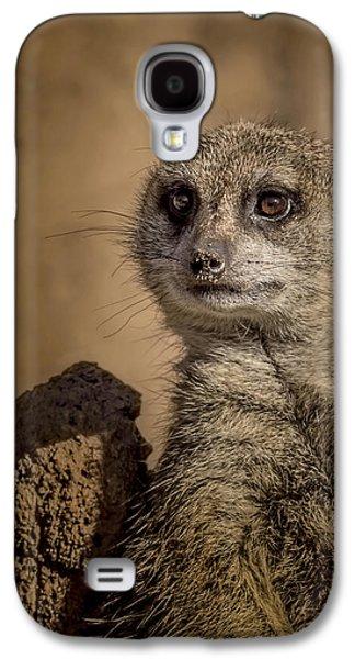 Meerkat Galaxy S4 Case by Ernie Echols