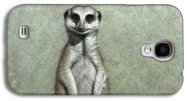 Nature Drawings Galaxy S4 Cases - Meerkat Galaxy S4 Case by James W Johnson
