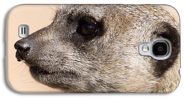 Meerkat Mug Shot Galaxy S4 Case by Ernie Echols