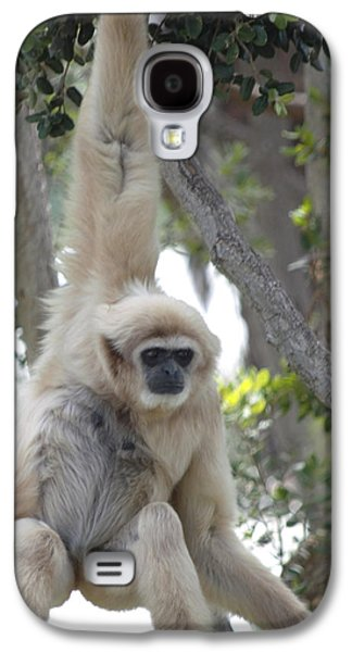 Ape Digital Art Galaxy S4 Cases - Mell Gibbons Galaxy S4 Case by Barbara Snyder