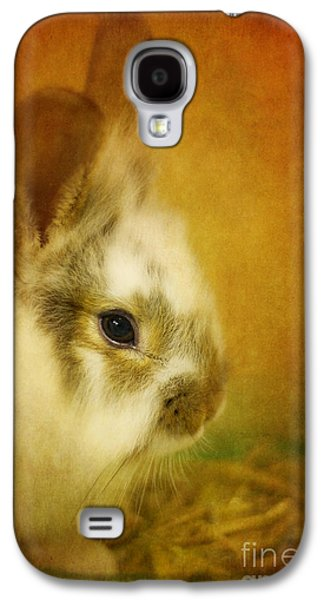Rabbit Digital Galaxy S4 Cases - Memories of Watership Down Galaxy S4 Case by Lois Bryan