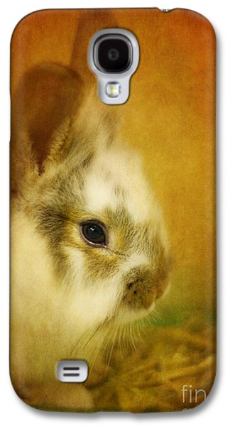 Memories Of Watership Down Galaxy S4 Case by Lois Bryan