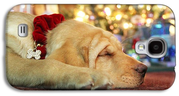 Best Sellers -  - Puppy Digital Art Galaxy S4 Cases - Merry Christmas from Lily Galaxy S4 Case by Lori Deiter