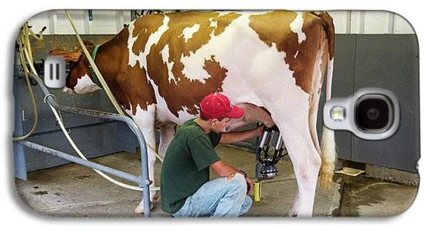Milking A Cow Galaxy S4 Case by Jim West