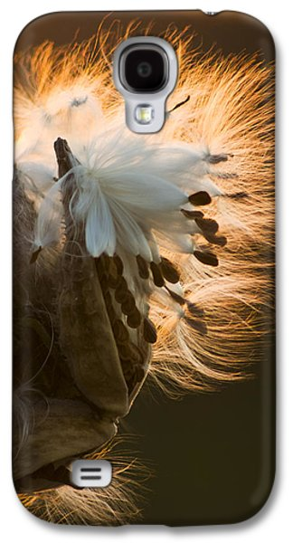 Pods Galaxy S4 Cases - Milkweed Seed Pod Galaxy S4 Case by Adam Romanowicz