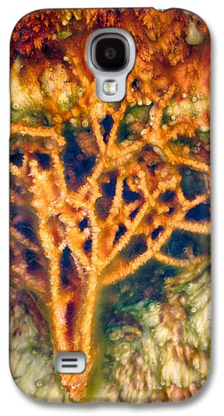 Alga Galaxy S4 Cases - Mineral Branches Galaxy S4 Case by Scott Campbell